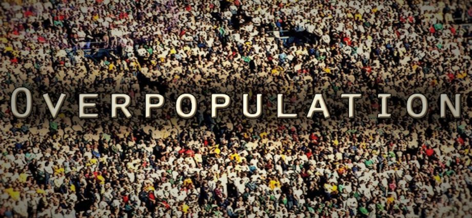 Disadvantages Of Overpopulation (Essay Sample) - Blog About Academic Writing