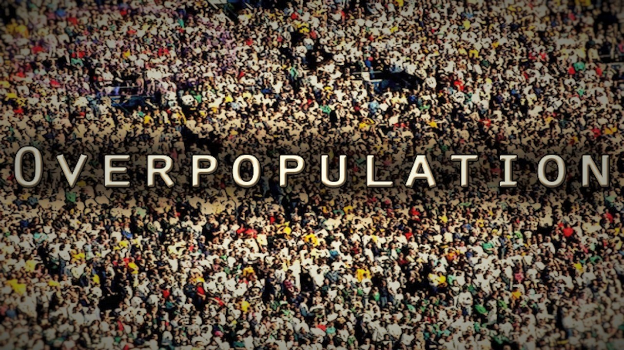 Disadvantages Of Overpopulation (Essay Sample)